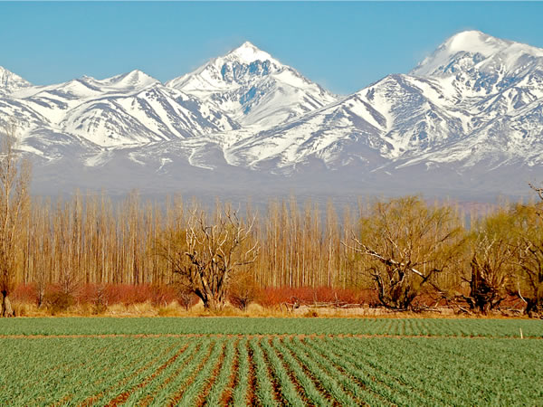 Travel to Mendoza by bus